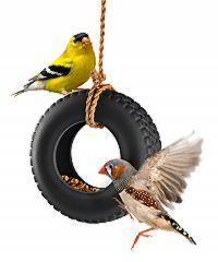 birdswing.jpg